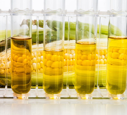 News - Let's Get Rid of the Ethanol Mandate, Not Reform It
