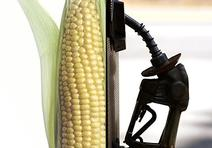 corn-worse-than-oil