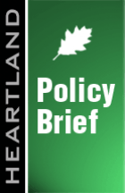 policy-brief_3